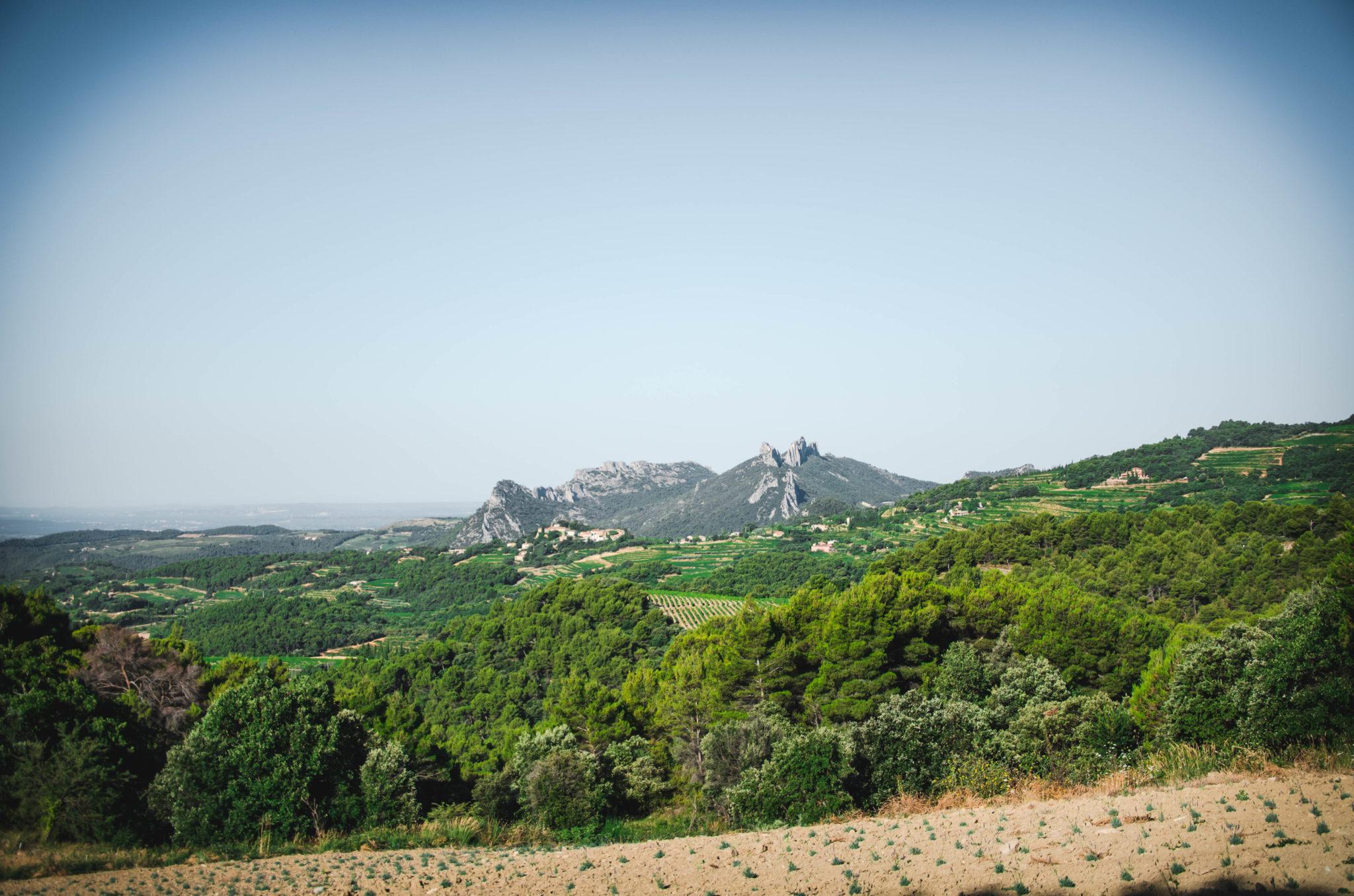 Superbe balade dans les Dentelles de Montmirail, Provence