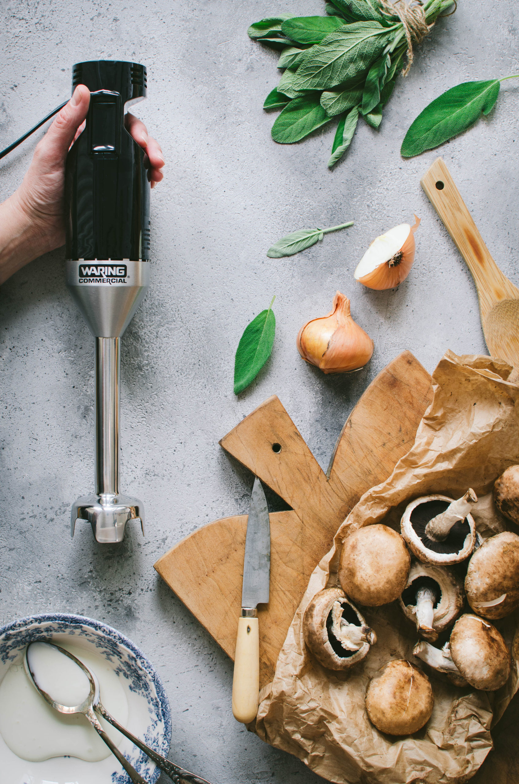 Photo champignons