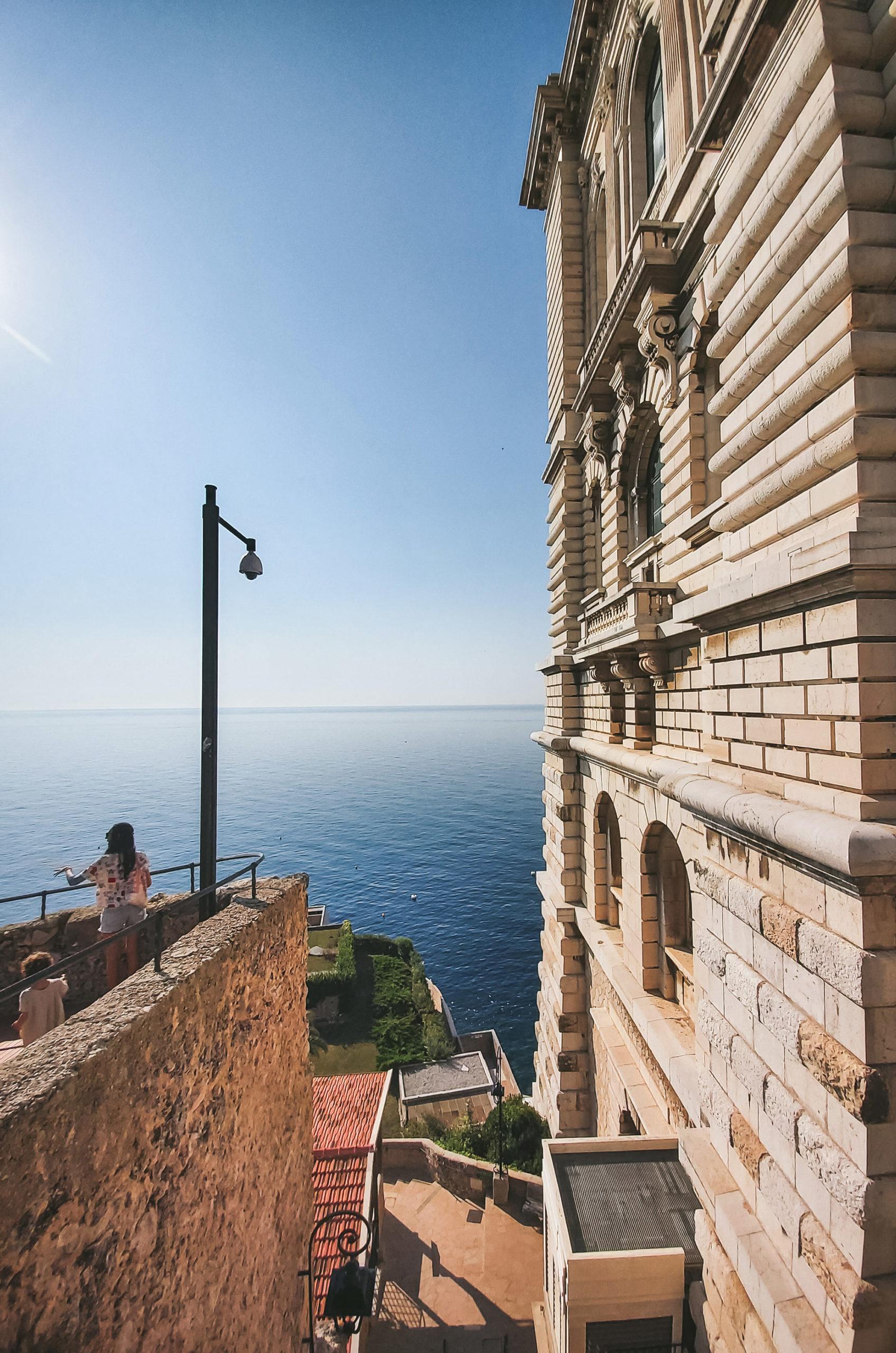 5 choses à faire sans voiture dans la Riviera autour de Nice - Aquarium Monaco
