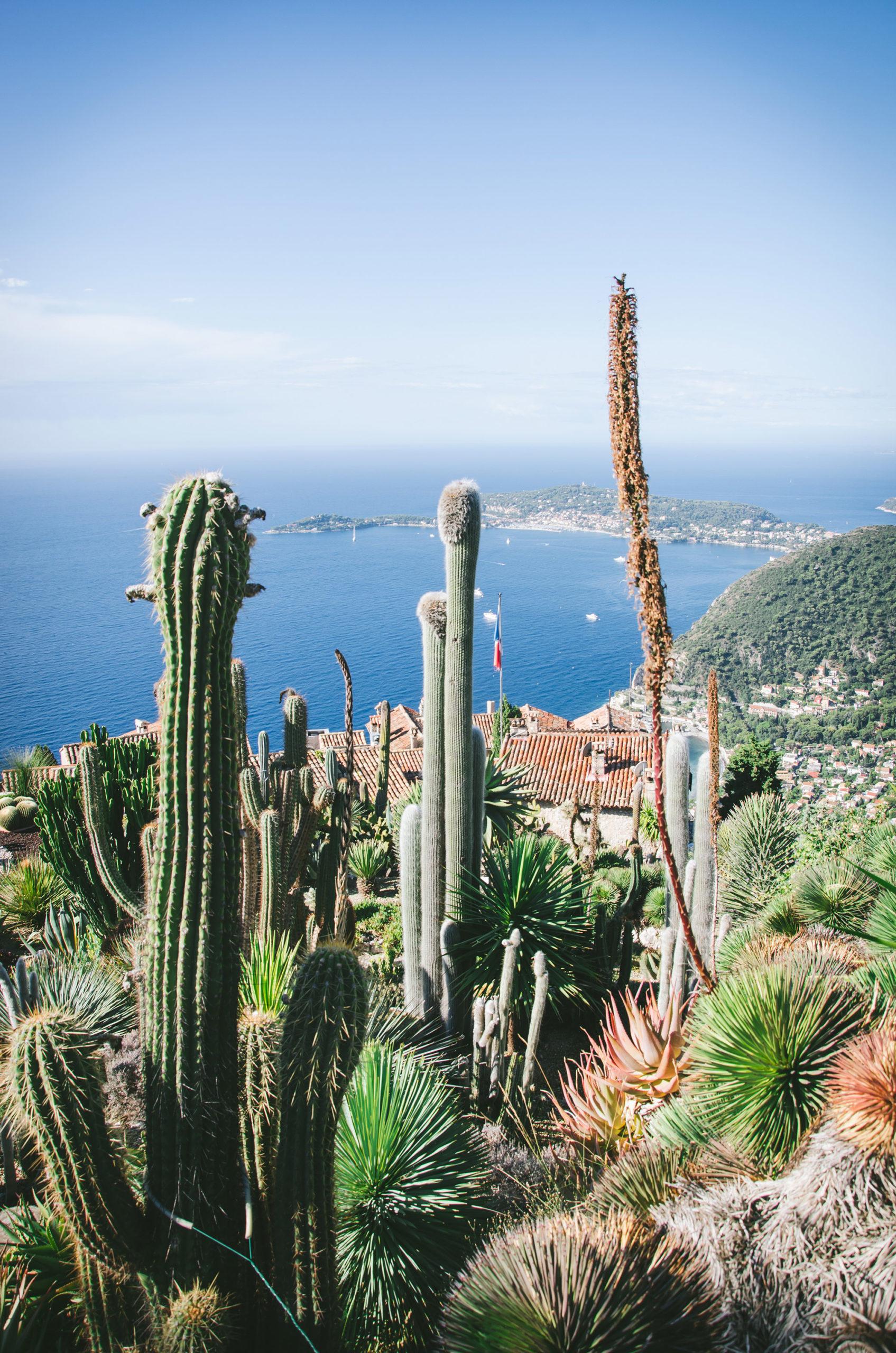 5 choses à faire sans voiture dans la Riviera autour de Nice - Jardin botanique Eze