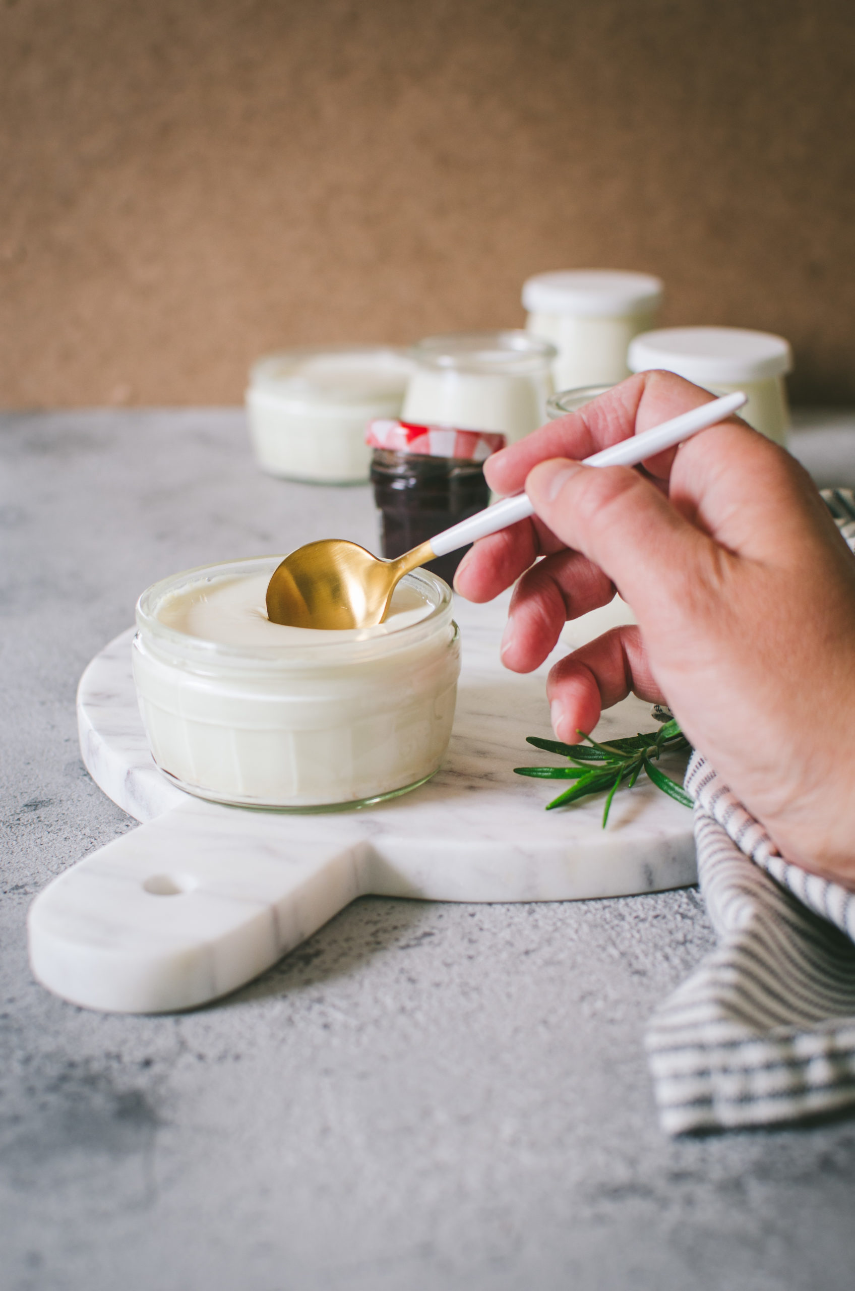 yaourt maison sans yaourtière